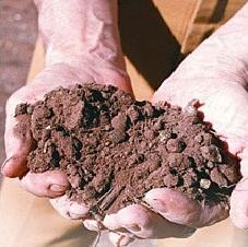 Керамические строительные материалы Сырьё Основным сырьевым компонентом керамических строительных материалов